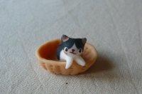 バスケット猫E