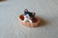 バスケット猫S