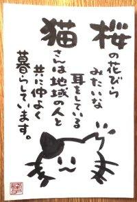 墨で手書き 絵葉書 桜猫C