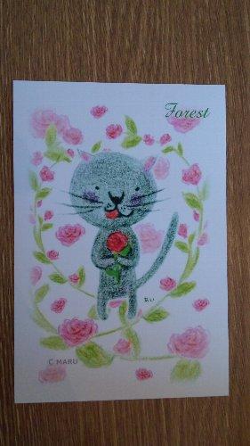 画像1: ポストカード 「フォレストキャット あい」