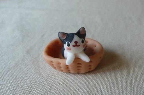 画像1: バスケット猫A
