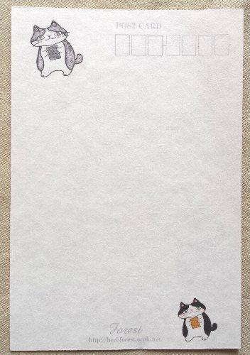 画像2: ポストカードA
