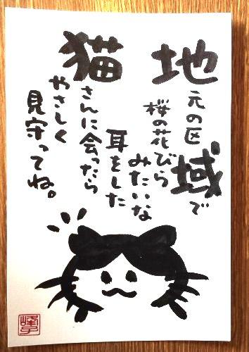 画像1: 墨で手書き 絵葉書 桜猫B