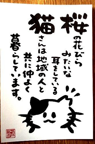 画像1: 墨で手書き 絵葉書 桜猫D