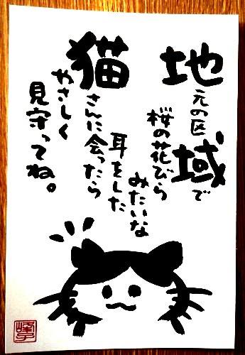 画像1: 墨で手書き 絵葉書 桜猫A