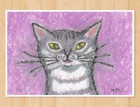 MARU イラスト ポストカード 「さばとらにゃんこ」